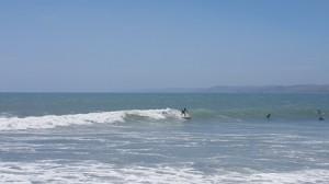 Surf Raglan2_web