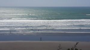 Surf Raglan_Web